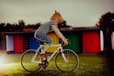 Horsy Bought a Fixie by rabbit888