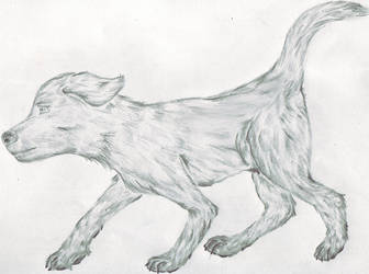 Dog :Shaded Fur: by rjwrite