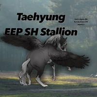 Taehyung/ blue roan pegasus in a field ( NEW ) by TheOdddArtist