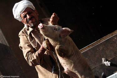 Swine Flu ... by Haymanicss