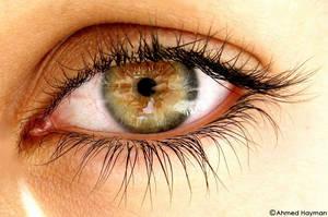 Green Eye by Haymanicss