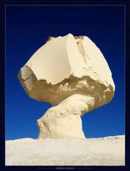 Mushroom Fossil by Haymanicss