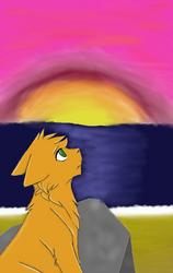 Sunrise Contest Entry by Lilyzxcv
