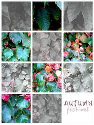 Autumn Festival by lotus82