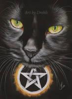 Witch cat by Drehli