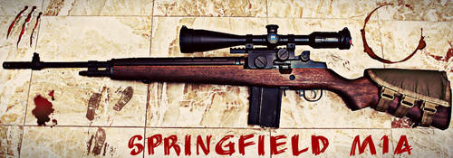 Springfield M1A by Kris09760