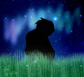 A Beautiful Night by EmikoEV