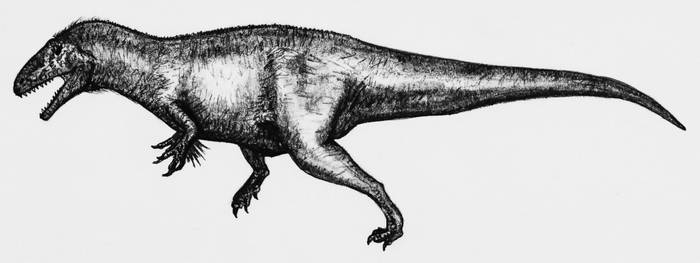Acrocanthosaurus atokensis by theropod1