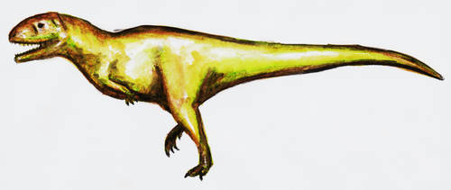 Aucasaurus by theropod1