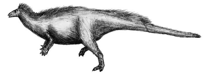 Camptosaurus by theropod1