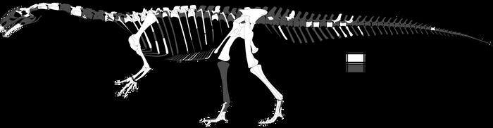 juvenile P. engelhardti by theropod1