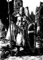 Dark Ages page 3 N by klarens
