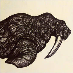 Walrus ink by theRealSEA