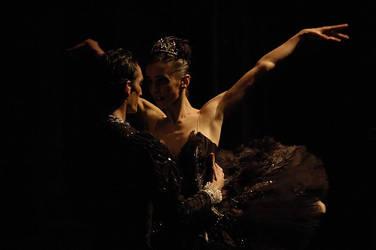 SWAN LAKE by balerin