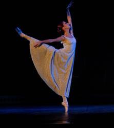 HAREM I by balerin