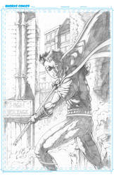 Robin Cover Sample No1 by Mykemanila