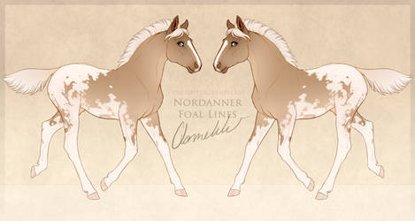 Renneka Nordanner Foal Design by qannekke