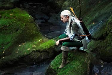 Emerald [Legolas cosplay] by the-ALEF