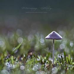 .: Morning Glory :. by hellfirediva