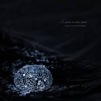 : spark in the dark : by hellfirediva