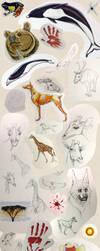 Duty Sketches II by Kanina-Firefox