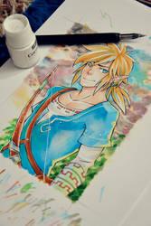 Legend of Zelda - link wii u design by Jasdavi