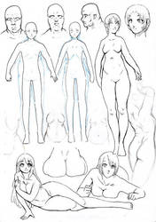 Study: Body Fat by The-Nai