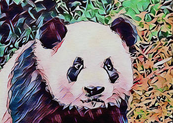 Panda Nature by bemorelikeapanda