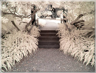 Stairs At Crystal Castle by JohnK222