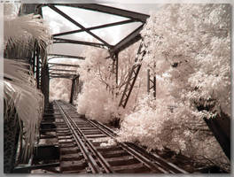Eltham Bridge by JohnK222