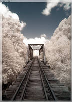Booyong Bridge by JohnK222