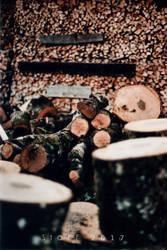Das Warten auf den Winter by StoFF-1990