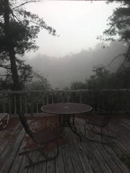 foggy morning by dogo987
