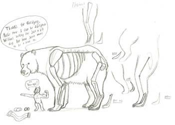 Digitigrade Bear Biology by Troyodon