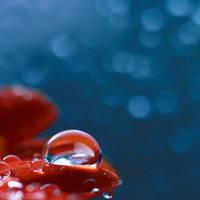 raindrops.2 by simoendli