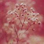 breath away. by simoendli