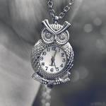 owl time. by simoendli