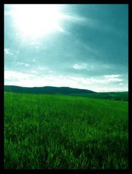 Meadow by Lunet
