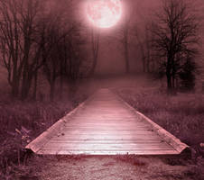 Path and forest premade BG by StarsColdNight