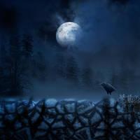 Raven Spot II premade BG by StarsColdNight