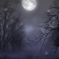 Moonlight II spot BG by StarsColdNight