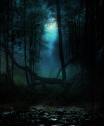 Woods Premade Bg By Starscoldnight by StarsColdNight