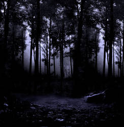 Woods III premade BG by StarsColdNight