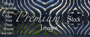 banner 11 for premium stock by StarsColdNight