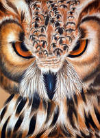 Eurasian eagle-owl by Verenique