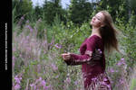Fireweed 9 by Kuoma-stock