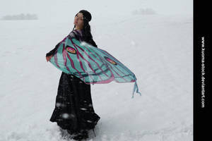 Winter Moth 10 by Kuoma-stock