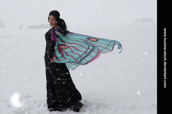 Winter Moth 6 by Kuoma-stock