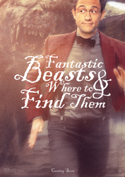 Fantastic Beasts and Where to Find Them by hobo95