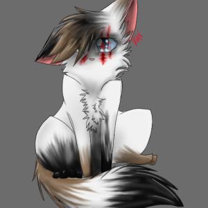 KatzRule28's Profile Picture
